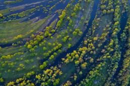 Aerial photos with a drone over the River Pripyat, Polesie, Belarus. © Viktar Malyshchyts