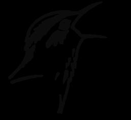 APB-BirdLife Belarus